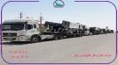 حمل دامپتراک از بندرعباس به تبریز توسط کمرشکن5محور پلدار